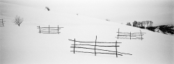 DE002 - Summer hay drying racks in the snow, Romania