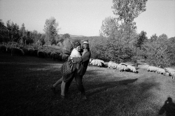 DE010 - Husband and wife embrace, Valeni, Maramures, Romania