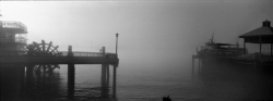 PC010 - Natchez steamboat in fog, New Orleans, USA